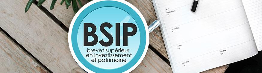 Présentation de la formation BSIP
